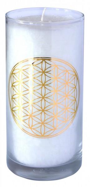 "Kerze ""Pure BDL"" im Glas Stearin 14cm"